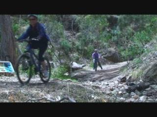 Escapegoat Adventures: Mount lofty and Cleland Wildlife Park tour by bike
