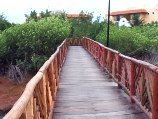 Occidental Grand Cozumel: Turtle Pond