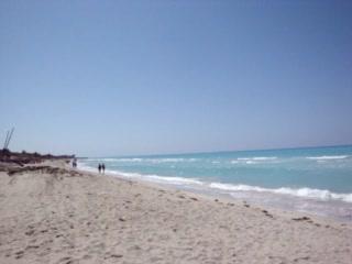 Be Live Experience Turquesa: Oasis Turquesa - Beach