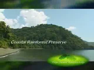 Playa Nicuesa Rainforest Lodge: Overview about your stay at Nicuesa Lodge