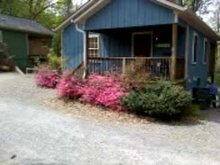 Asheville Cottages: Beautiful Asheville cabin in the spring!