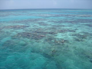 Ambergris Caye, Belize : Leaving The Blue Hole