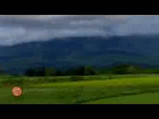 Yama Shizen: I Love Niseko  / ハッピーロングステイライフ in Niseko