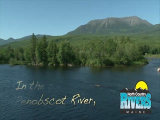 Bingham, ME: Penobscot River Rafting in Maine with North Country Rivers