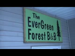 Inside the Evergreen Forest B&B