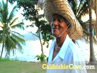 Калибиши, Доминика: Enjoy a Blissful Stay at Calibishie Cove When in Dominica