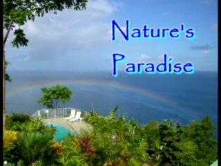 Nature's Paradise at Marigot Bay
