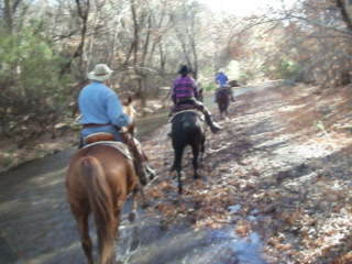 Loping in the Creek at Circle Z