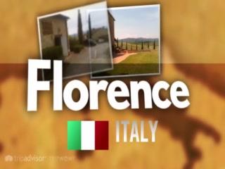 Under The Tuscan Sun Tours: FLORENCE, CHIANTI, PISA & TUSCANY TOURS