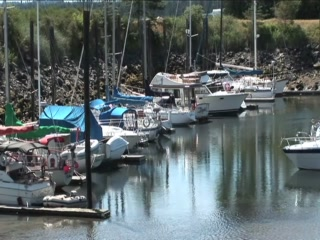Pacific Playgrounds International RV Park, Cottages, Marina: Pacific Playgrounds Marina