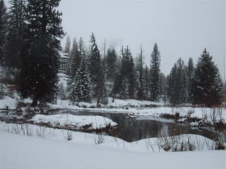 Aspen Center for Environmental Studies: Snow falling on Hallam Lake