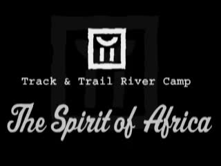 Track and Trail River Camp : South Luangwa safaris