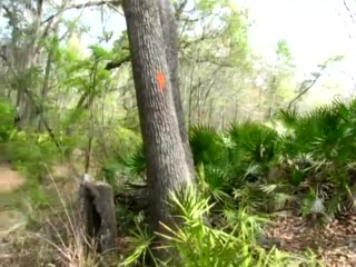 White Springs, FL: Florida Trail Video