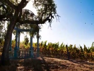 The Meritage Resort and Spa - We are Napa