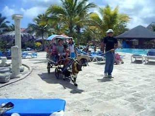 Rafael Freyre, Kuba: Kids club