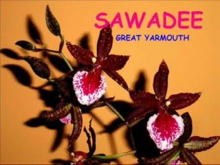 interior of Sawadee