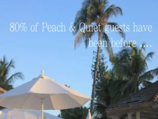Peach and Quiet Tropical Tranquility