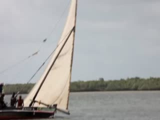 Dhow Sailing regatta in Lamu - Filmed by the Majlis Hotel (August 2011