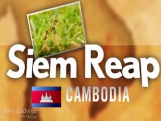 เสียมราฐ, กัมพูชา: Kingdom of Wonder