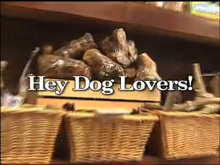 Canine Creek TV Commercial