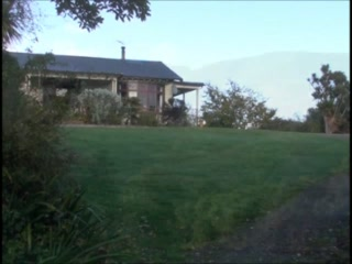 Catlins Mohua Park Forest Reserve and Cottage  Accommodation
