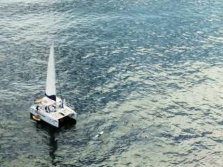 Tamarindo, Kostaryka: Blue Dolphin Tour