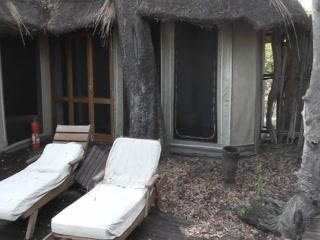 Linyanti Reserve, Botswana: Kings Pool