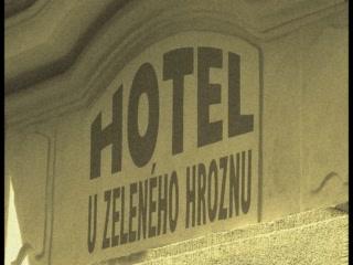Hotel U Zeleneho hroznu (Hotel At the Green Grape): hotel spot