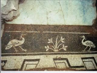Hotel Don Paula : Restos arqueologicos