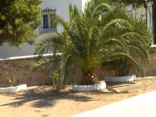 Villa Anna Maria: Villa Anna_Maria.Mylopotas Ios Cyclades Greece.