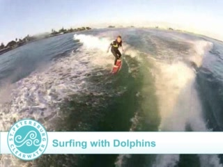 Belleair, Flórida: Check out this video of a local teen surfing with wild dolphins off St. Pete Beach!