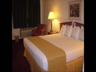Quality Inn: The New Vagabond Inn & Suites