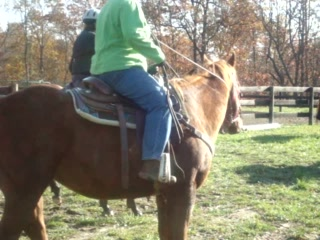 Adamsville, OH: Fun times at KD Guest Ranch