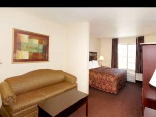كومفرت إن آند سويتس ماديسون نورث: Comfort Inn & Suites