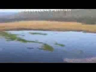Lake Elementaita, Kenya: Rift Valley Adventures