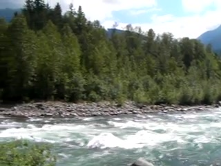 Riverbend Guest House B&B: Chilliwack River just a 3 minute walk from Guest house & cabin