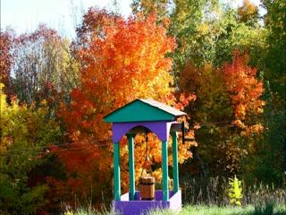 Wildwood B & B Denbigh, Ontario Canada