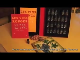 Mas du Clos de l'Escarrat: Wine tasting and aromas in wines workshop