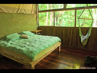 The Jungle House : Jungle House Vacation Rental On The Beach In Santa Teresa Costa Rica