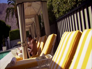 Desierto de California, CA: Palm Springs Oasis