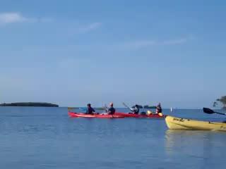 La Parguera, เปอร์โตริโก: Guided Kayak Day Tour