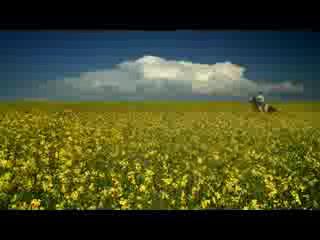 Alberta, Canada: Combo (remember to breathe)