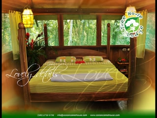 Tree House Lodge: tree house introduction