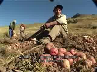 Potato Park Peru Video