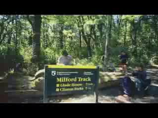 Milford Track Guided Day Walks - Real Journeys