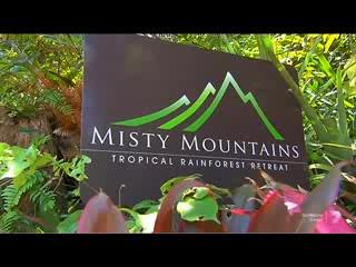 Bellenden Ker, Australia: Misty Mountains Rainforest Retreat on TV show QLD WEEKENDER