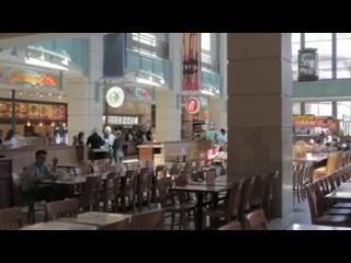 Visit Lenox Square Phipps Plaza Atlanta Mall Of Georgia And More