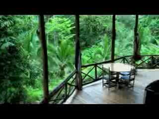 Esquinas Rainforest Lodge : Esquinas Lodge: jungle villa