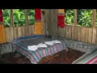 Esquinas Rainforest Lodge : Esquinas Lodge: cabins