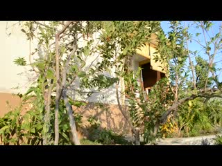Paradise Bungalows Bali: Welcome to Paradise Bungalows Amed